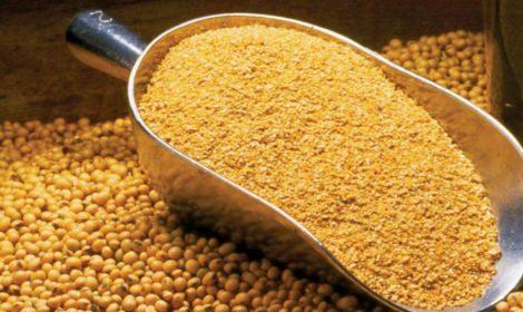 شیوه های خوب برای صنعت خوراک تولید فرآورده های دامی و سلامت