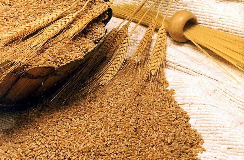 خرید خرده گندم اصلاح شده داخلی
