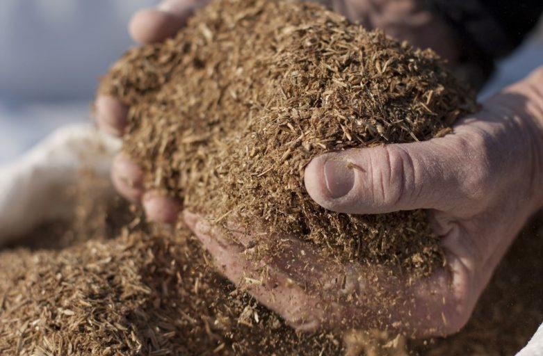 خریدار پودر گوشت خوراک دام دامی ارومیه